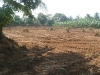 farm-rehabilitation-5